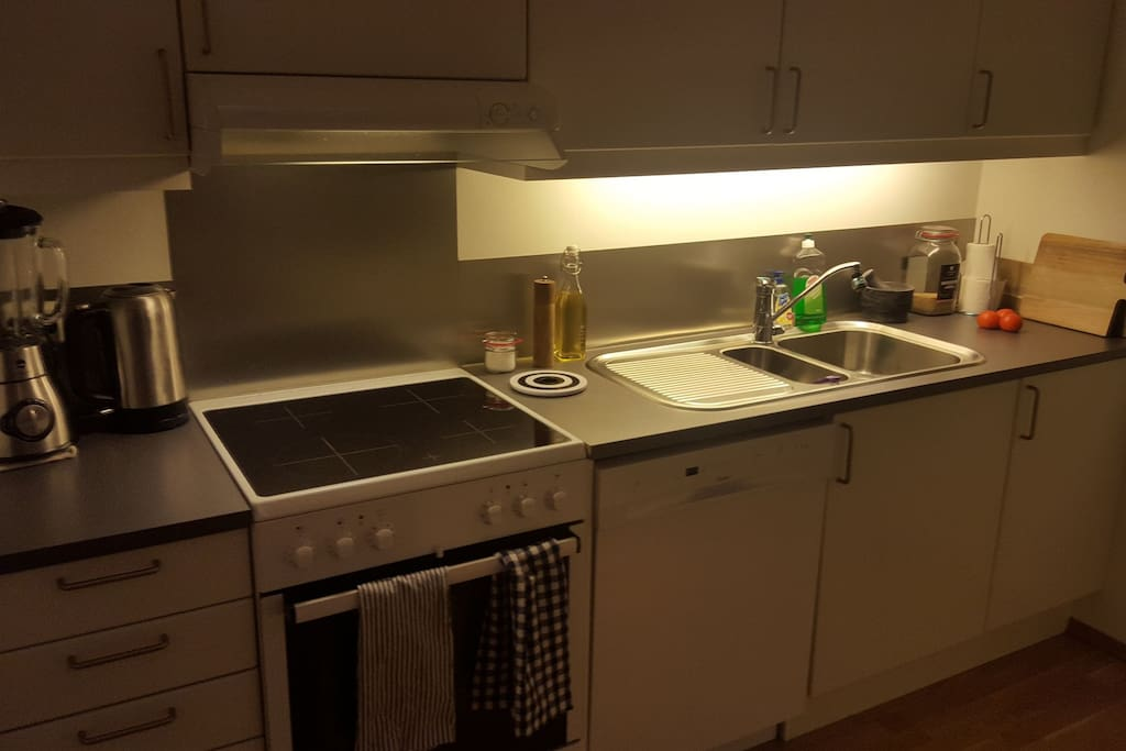 Clean kitchen with oven and dish-washer, water-heater and blender.