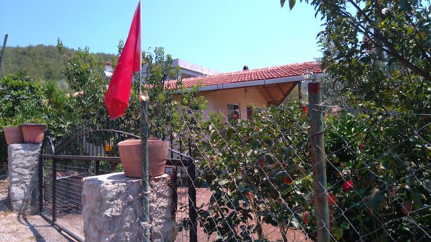 Village life - Hisarönü Köyü - Huis