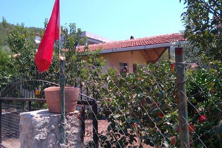 Village life - Hisarönü Köyü