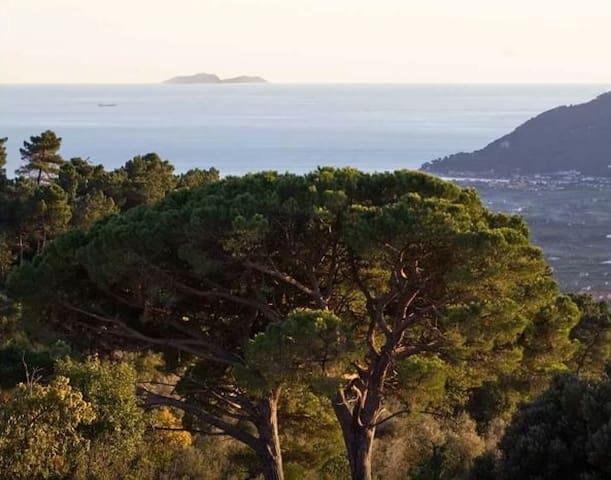 Tuscany Sea & Country View Villa - Fosdinovo - Villa