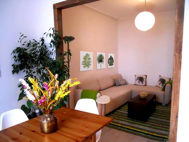 Apartamento con encanto centrico VUT.356.AS