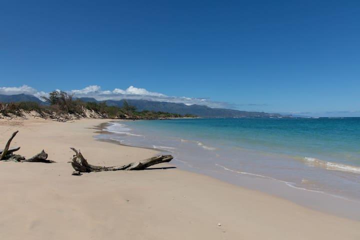 Maui North Shore Oceanfront, Beachfront!