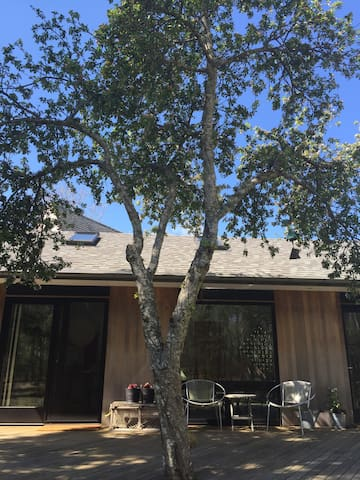 A mature apple tree shades your private deck.