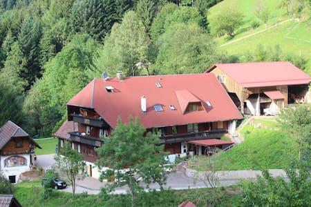 40m² Wohnung (Nr. 1) Ferienparadies Maierbauernhof - Bad Peterstal-Griesbach - Квартира