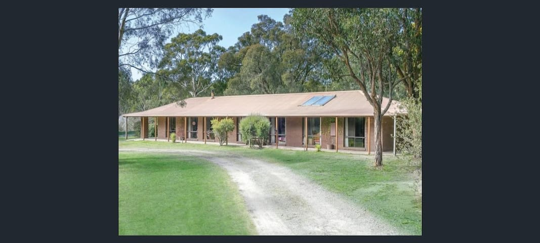 Home amoung the gum trees