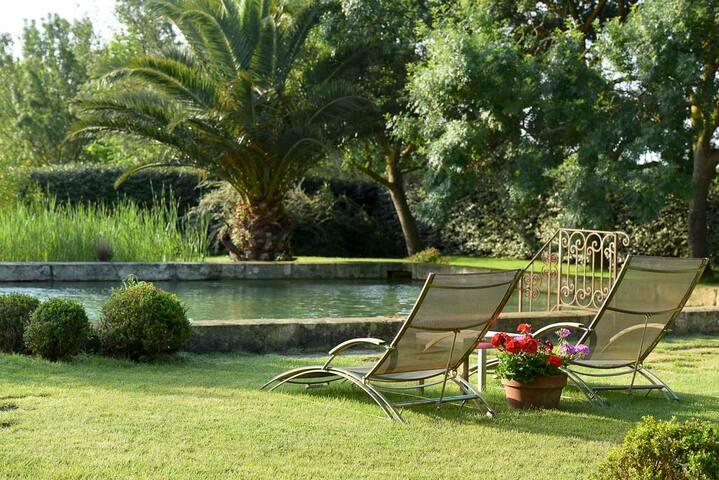 Gite de charme des muriers - Narbonne - Appartement