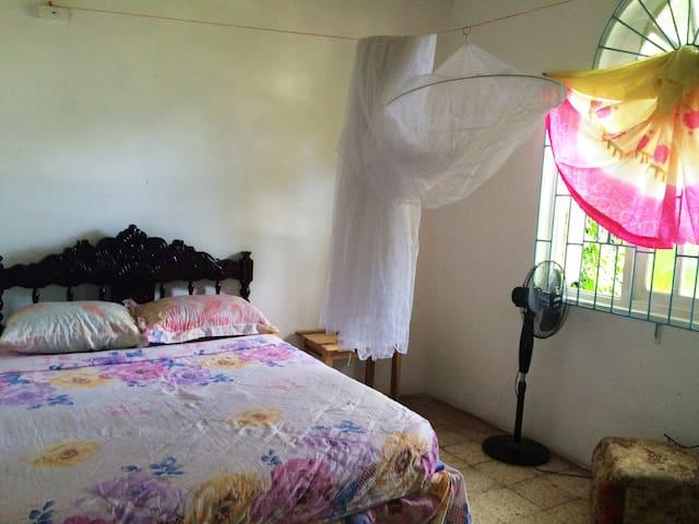 Rastaman Rev's Garden Hostel  room #2 - Port Antonio - Ev