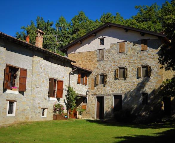 Castagneda, a casa nel bosco