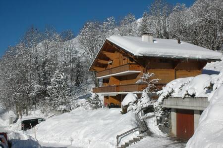 Chalet Pre-Riaux A6 - Ormont-Dessus - Chatka w górach