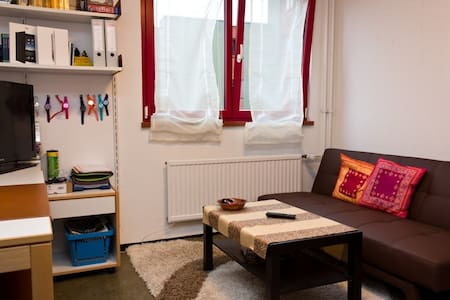 Gemütliche 1-Zimmer Wohnung - Würzburg