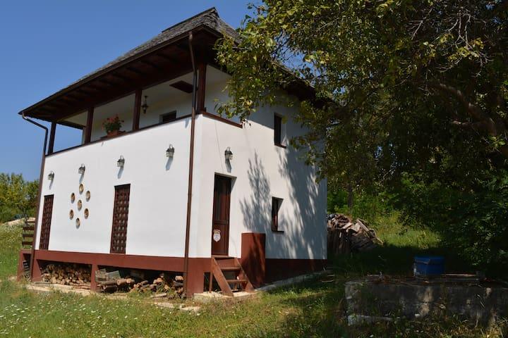 Cottage Poe, cu fata la Paradis - București - House