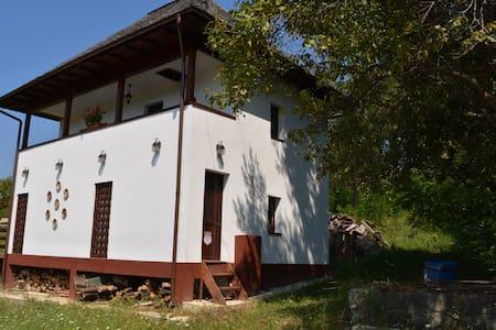 Cottage Poe, cu fata la Paradis - București