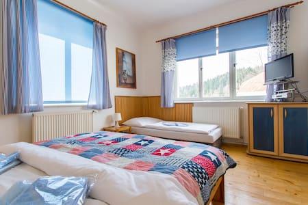 Apartmán č.2  v Jizerských  horách - Janov nad Nisou