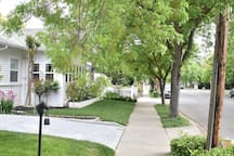 One of Lodi's most charming streets... location, location, location