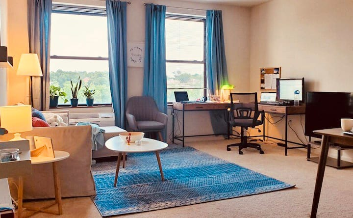 Large bright apartment near RWJ
