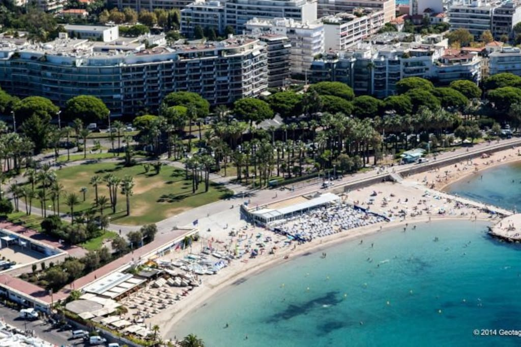 Palm beach croisette area, confidential and very relaxing and safe area