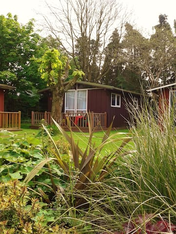 SEATON  DEVON 2 BEDROOM CHALET PETS WELCOME