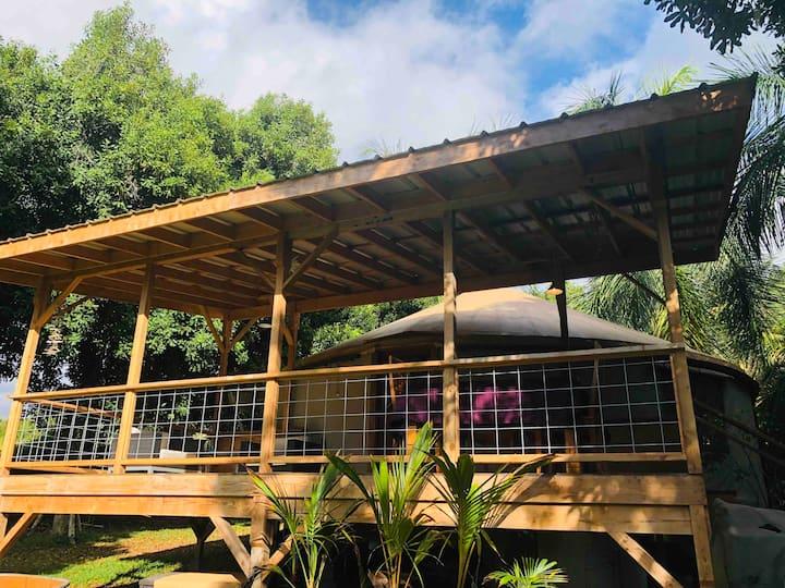 Maluhia Macadamia Nut Kona Farm Yurt