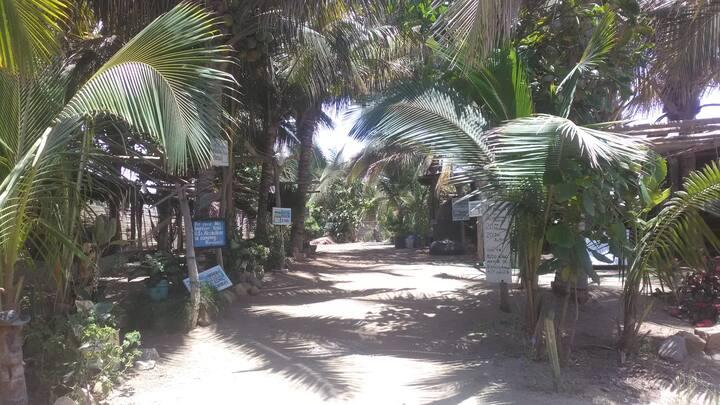 Eco Hostel TITO Surf Camp habitación 2