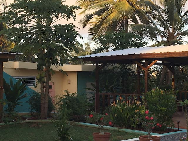 Pedros Palms for spring #A - Isabela - House