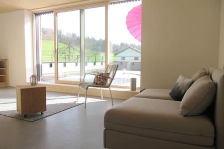 Appartement am Pfänderhang in Bregenz - Fluh - Lejlighedskompleks