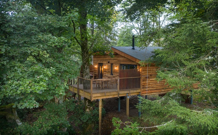 Nuthatch, Luxury Treehouse in Scottish Highlands