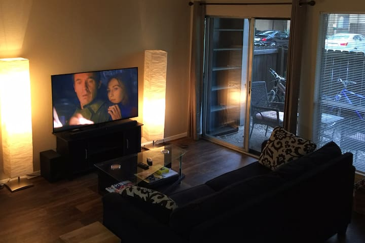 Large 1Bed/1Bath Apartment, Accommodates up to 4 - Austin - Lejlighed
