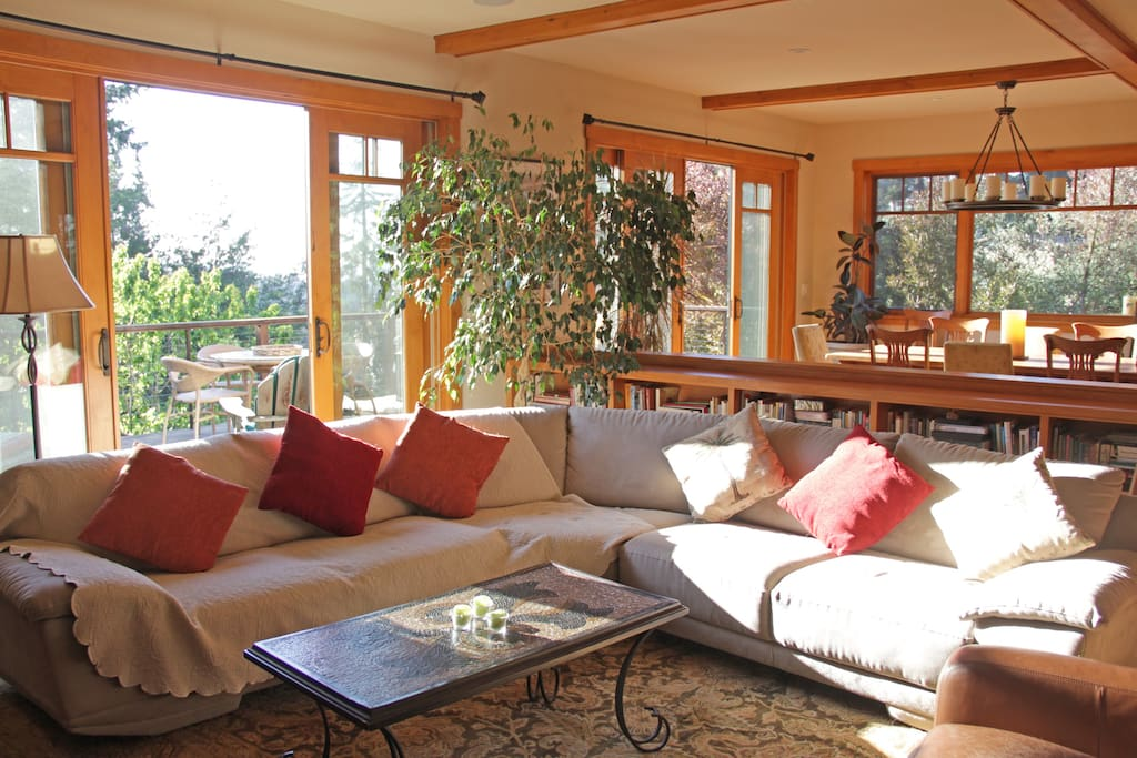 Main floor living room with lots of light and windows.