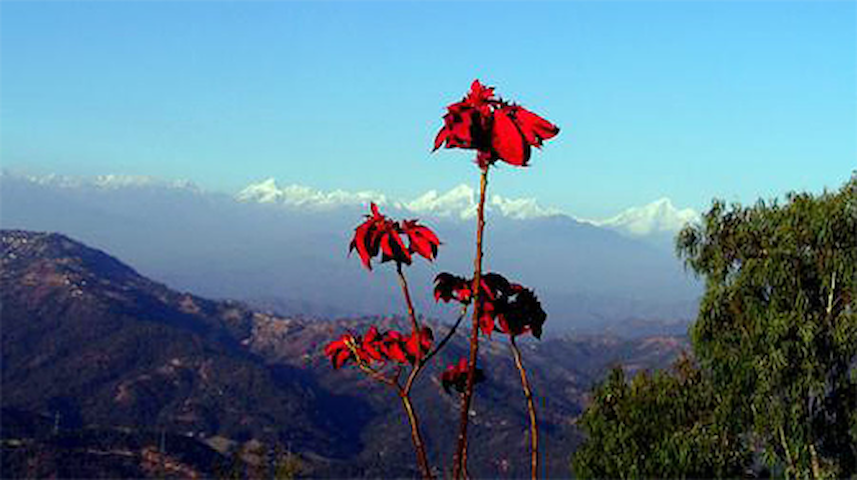 Snow View Mountain Resort - Dhulikhel - Bed & Breakfast
