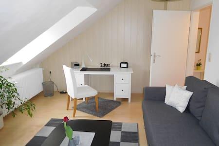 2-Zi Apartment Hanau / Frankfurt ISH fair 1-4Pers - Hanau