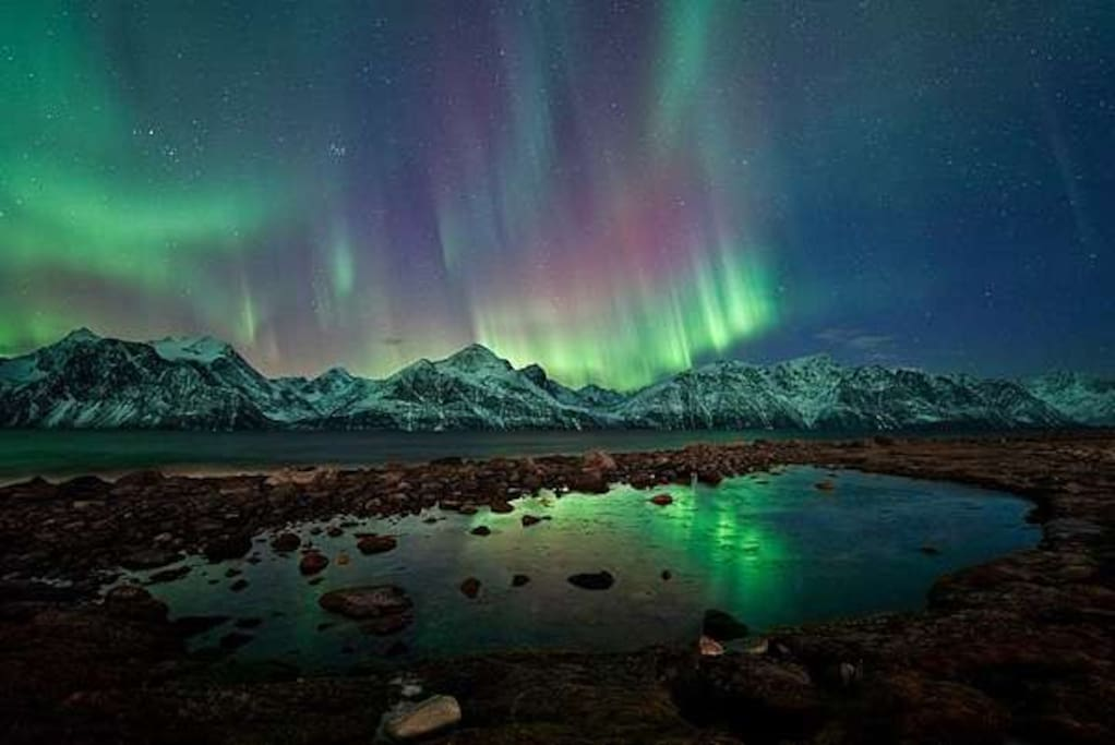 Alot of Northern Lights in the area!!