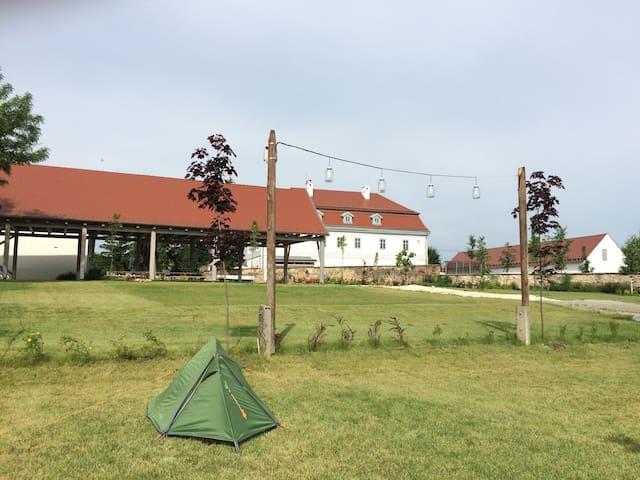 Bakonyi Camping a bagolyvarfogado kertjében - Zirc - Tenda