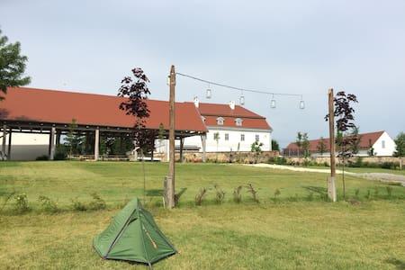 Bakonyi Camping a bagolyvarfogado kertjében - Zirc - 帐篷
