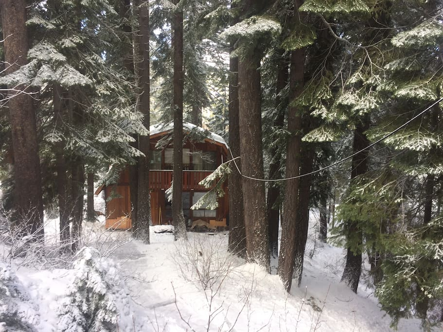 Quiet Mountain cabin, Donner Lake. - Cabins for Rent in ...