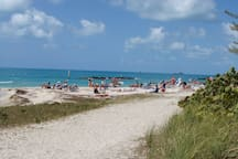 The beach at Fort Zachary Taylor