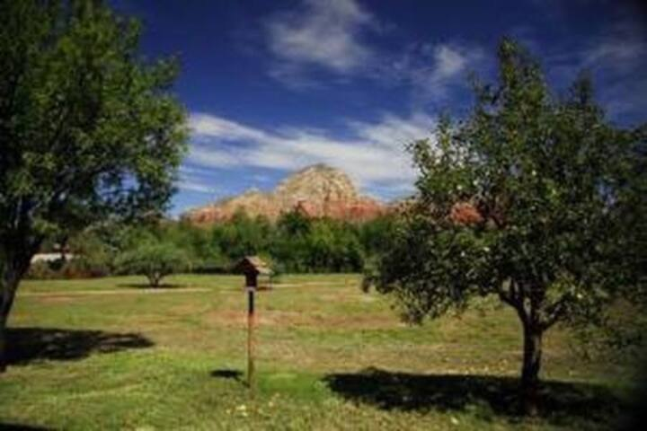 Best Views in Central Sedona. 3 acres. Koi ponds.