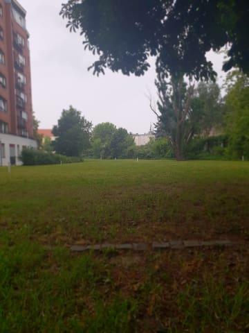 Die Wohnung liegt in Charlottenburg