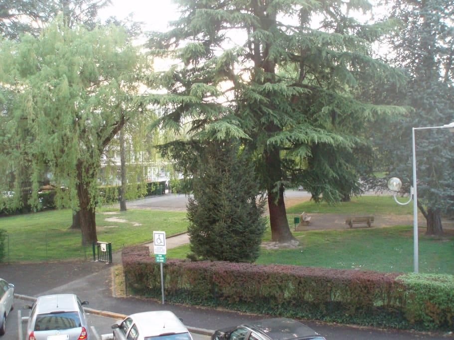 Salon : vue sur le parc
