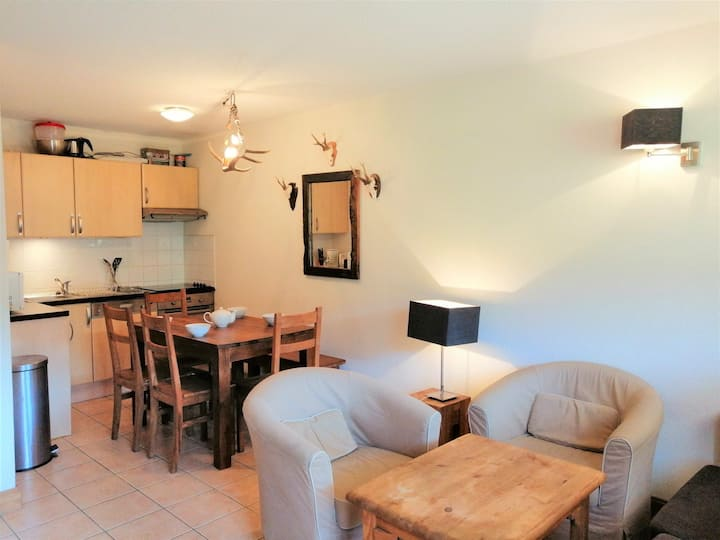 Nice apartment in front of skiarea !