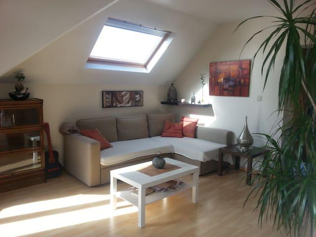 Appartement lumineux et chaleureux - Schaerbeek - Apartment