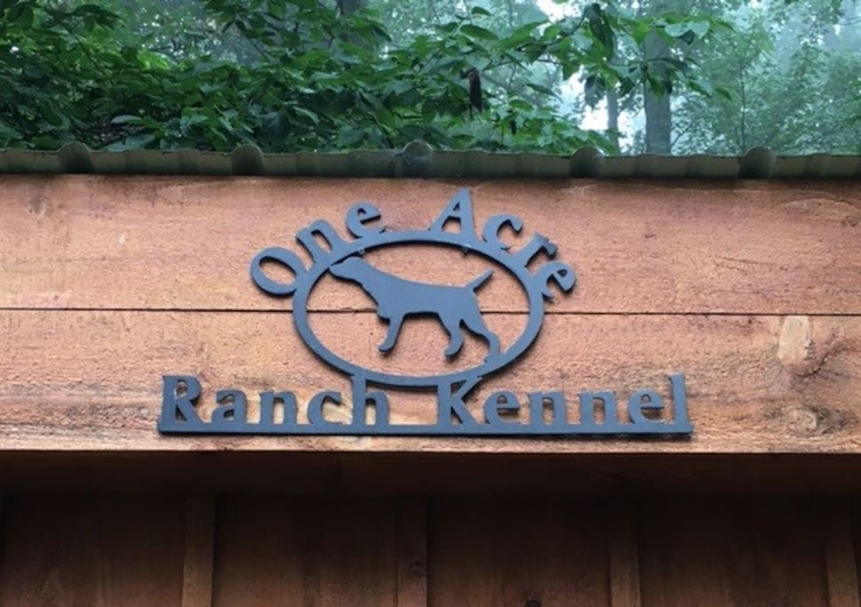 Living it Ranch style