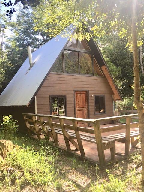 Cabaña del bosque - Lago Ranco
