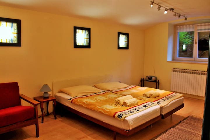 Studio apartment Nattache basement - Zagreb - Hus