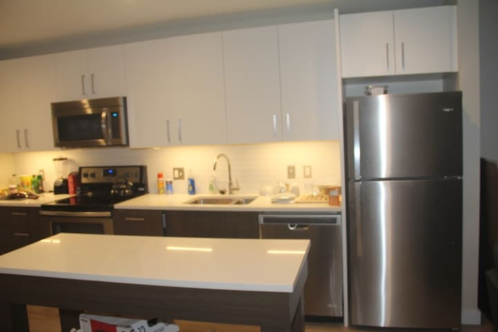 Wonderful 1BR apartment only  3 blocks from MIT - Cambridge - Flat