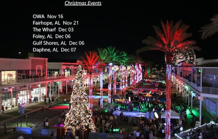 """Christmas in Dixie""  Book now for reduced pricing"