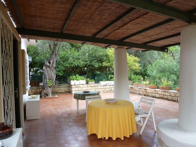 Holiday house in Pugnochiuso-Vieste Gargano,Puglia - Pugnochiuso- Vieste