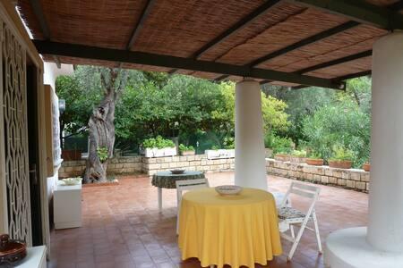 Holiday house in Pugnochiuso-Vieste Gargano,Puglia - Pugnochiuso- Vieste - Villa