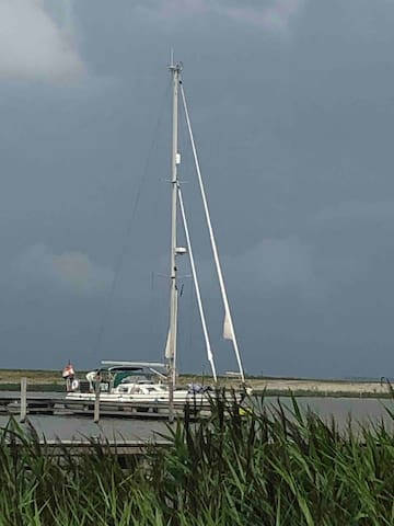Sailing around Amsterdam and  Marker Wadden