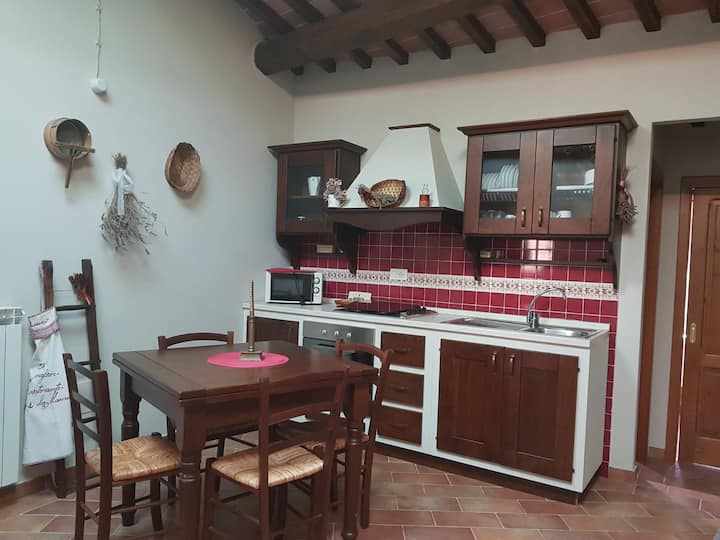 Holiday House in Tuscany: PAOLO's apartment