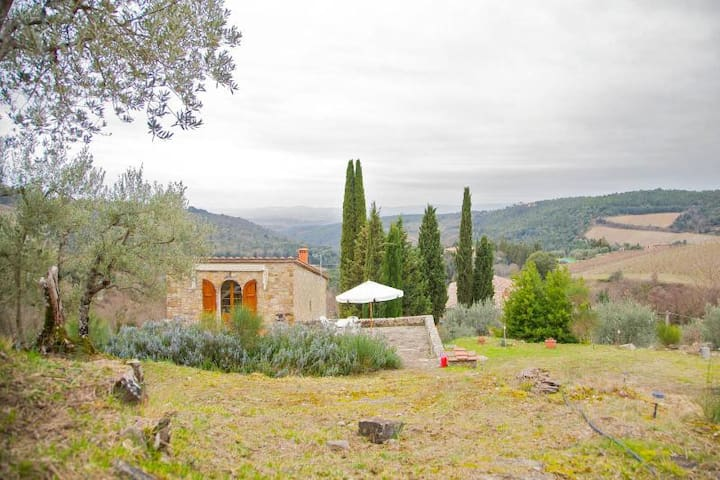 Traditional countryhouse in Chianti - Castellina in Chianti - House